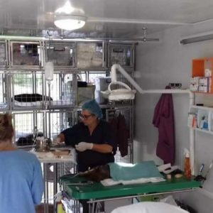 mobile_clinic (25)